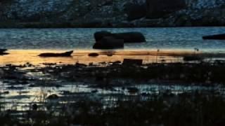 lagos alpinos belleza en calma los secretos de la naturaleza