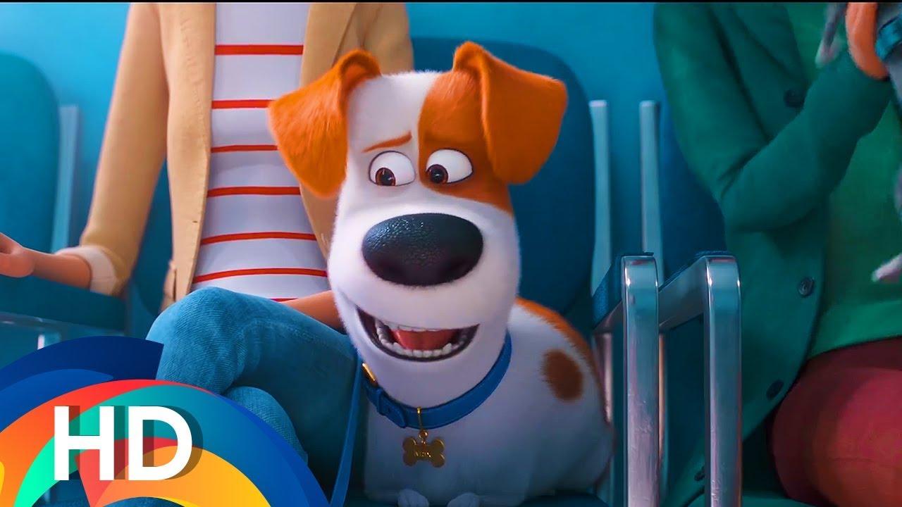 The Secret Life Of Pets 2 (2019) - Đẳng cấp thú cưng 2 - Offical Vietsub Teaser Trailer