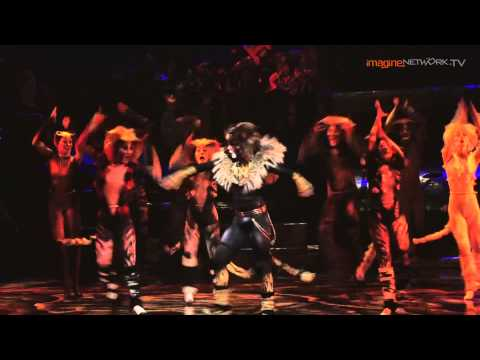 Cats - The Musical: The Rum Tum Tugger