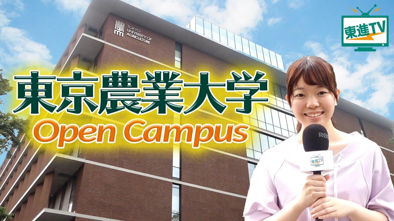 【東京農業大学】オープンキャンパスで幅広い学びを体感できる‼︎|最先端の研究を東京の真ん中で‼︎