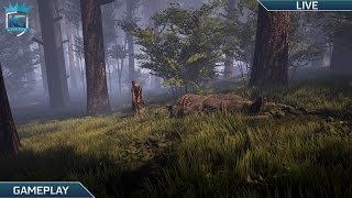 Finding Bigfoot with Taeya and MashStars!   Multiplayer Horror!   1080p 60FPS!