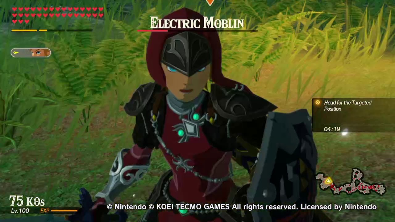 Frame Rate Issues Hyrule Warriors Age Of Calamity Youtube
