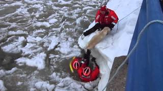 Video 2: Labrador rescued from ice by USCG Frankfort, Michigan
