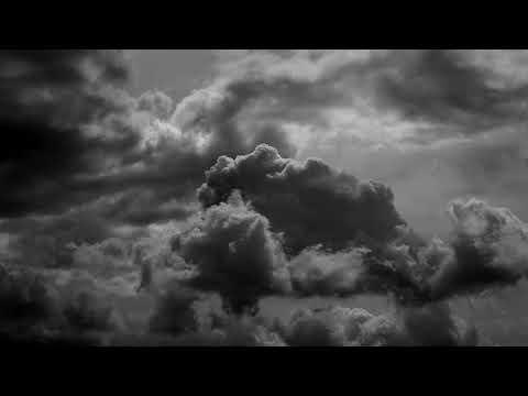 Birds ~ Nic Evennett ~ Official Video