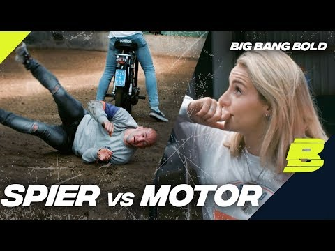 Wat is PAARDENKRACHT?? | BIG BANG BOLD - Concentrate BOLD