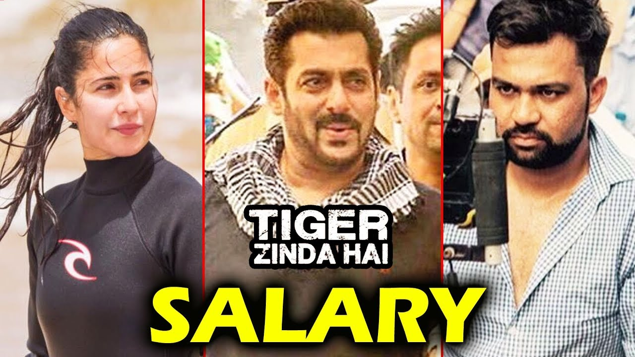 tiger zinda hai stars huge salary revealed salman khan katrina kaif