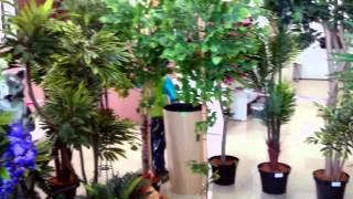 Искусственные деревья Украина Декоративные купить для интерьера квартиры ландшафта сада дачи дома