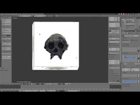 Sahelanthropus tchadensis - deform fossil to 3D reconstruction