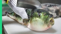 Eating Japan's POISONOUS PufferFish!!! ALMOST DIED!!! *Ambulance*