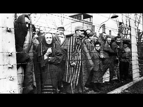Невероятный побег из Новогрудского гетто: самый громкий в истории Великой Отечественной