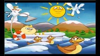 Küçük Ördekler - All My Ducklings - Baby TV Türkçe