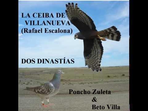 LA CEIBA DE VILLANUEVA (RAFAEL ESCALONA) - PONCHO ZULETA  & BETO VILLA (LETRA)