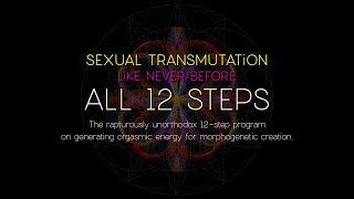 ALL 12 STEPS RECAP #SexualTransmutation