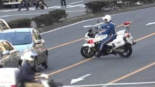 【緊急走行】白バイUターンで違反車の背後にピタリ!!