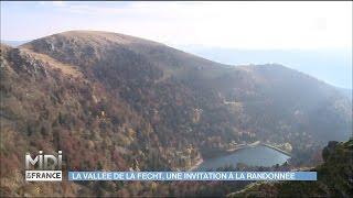 La Vallée de la Fecht : une invitation à la randonnée
