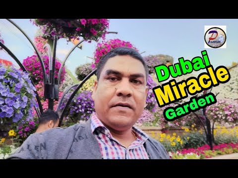 Dubai Miracle Garden  2019 🌹🔥nice time with friends