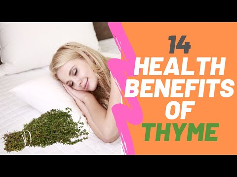 14 health benefits of Thyme
