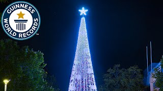 Largest display of Christmas lights on an artificial tree  - Guinness World Records