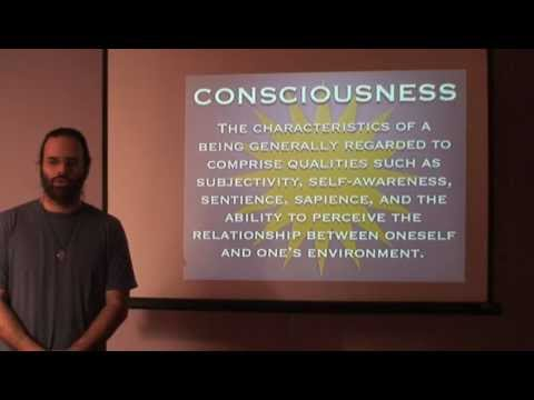 Mark Passio - Consciousness, Polarity & The Human Brain - WOEIH Part 1 of 4