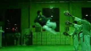 taekwondo 540 kick