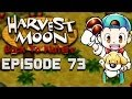 More Ingredients | Harvest Moon | Back to Nature EP.73