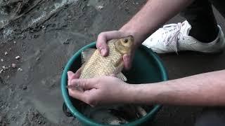 1 капля в любую насадку и клюёт вся рыба всегда