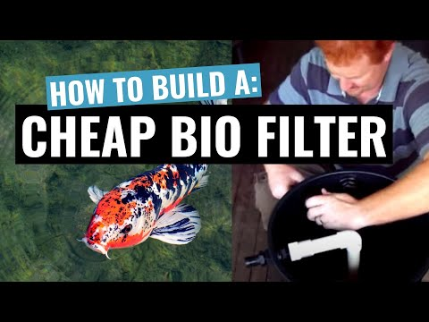 DIY Home Made Cheap Biological Filter For Your Koi Or Goldfish Pond For Under $100
