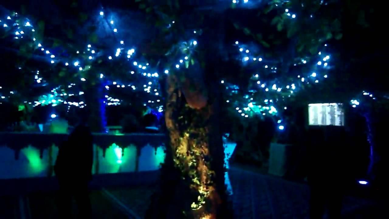 Garden Decoration Lights