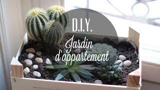 {DIY} Jardin d