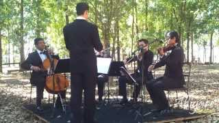 With a little help from my friends - Quarteto de cordas - The Beatles - Alligare Eventos