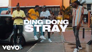 Смотреть клип Ding Dong - Stray