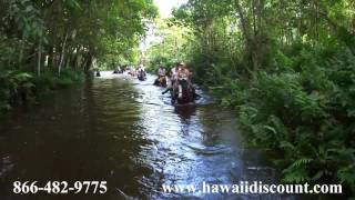 Waipio Valley Horseback Riding with Na