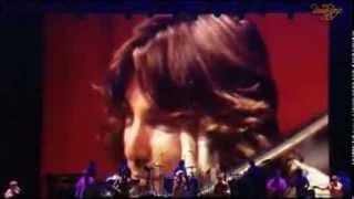 Beach Boys Forever Japan Live 2012