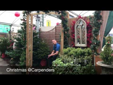 Christmas @ Carpenders Park Garden Centre