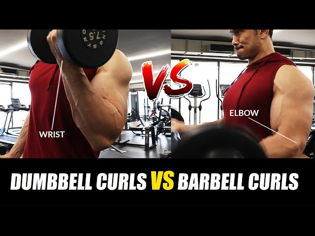 BARBELL CURLS Vs DB CURLS- Which is Better for you? (कौन है बेहतर)