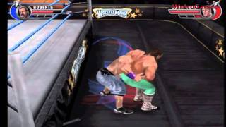 WWE All Stars Wii Retail Gameplay 'Jake the snake Roberts Vs John Cena' | PS3 | 360 | PSP | PC