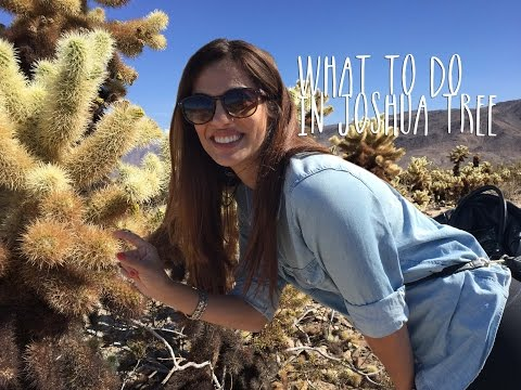 Travel California  ||  One Day In Joshua Tree National Park