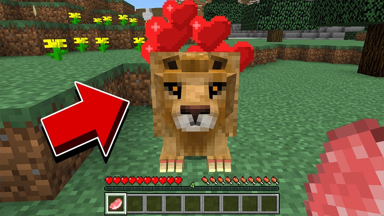 DO NOT FEED THIS LION IN MINECRAFT!