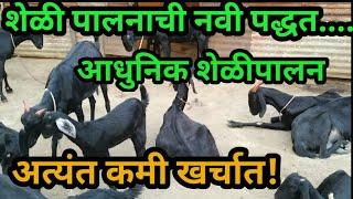 Goat farming. आधुनिक शेळी पालन  Satish ranher