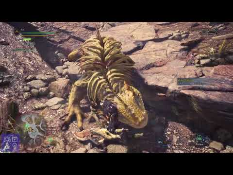 Monster Hunter World Gameplay - Ancient Forest - How to Kill Jagras - PS4 Expedition Gameplay