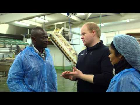United Nations University Fisheries Training Programme - Success Stories Of Fish Handling