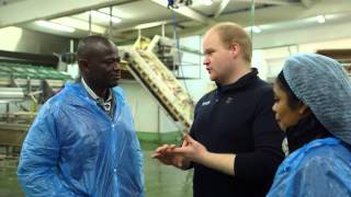 United Nations University Fisheries Training Programme - Success Stories of Fish Handling thumbnail