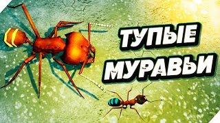 Самые ТУПЫЕ МУРАВЬИ в мире ! Битва мурашек - Симулятор муравейника