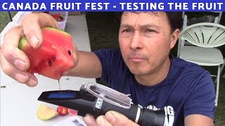 Checking the Fruit Quality at the Canada Fruit Festival 2019 Brix Testing Review