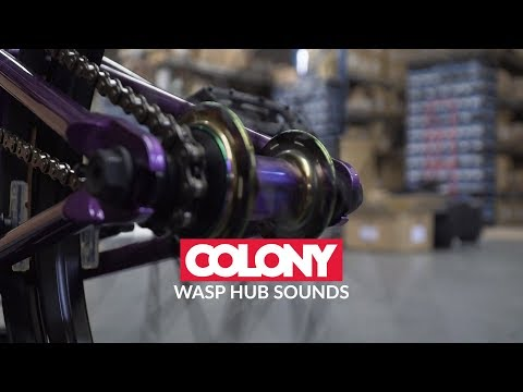 If you wanted to know what the Colony Wasp Cassette Hub sounded like before grabbing one then we've got you covered in this video. Learn more about the ...