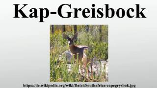 Kap-Greisbock
