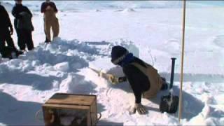 angela posada-swafford-Antartica-VTS_01_1.VOB