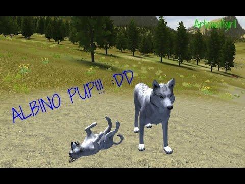 Wolf Quest Ipad