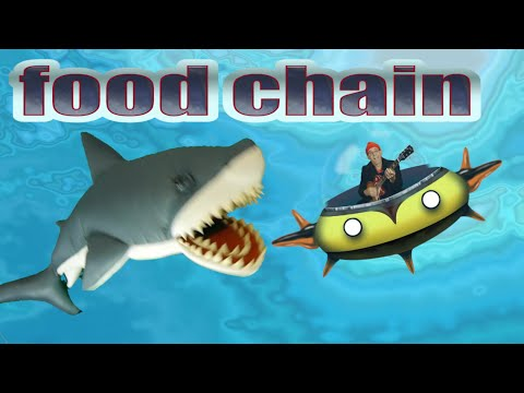 Ocean food chain song. What is the fastest shark and how do they depend on sunlight? Kids' science