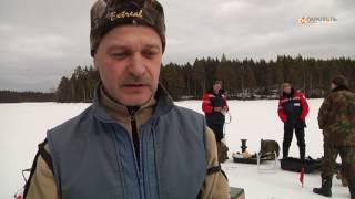 Костомукша первенство Карельского окатыша по зимней рыбалке